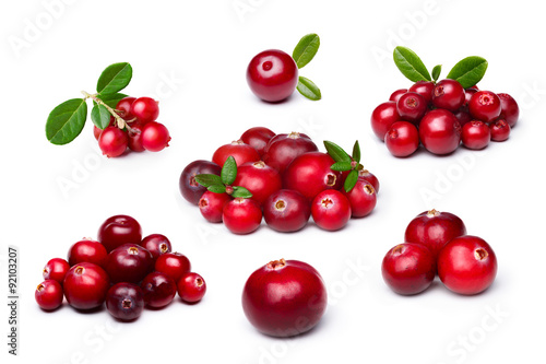 Fotografia  Cranberry,foxberry (lingonberry) isolated set