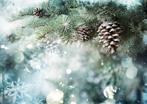 Fotografija  Fir Branch With Pine Cone And Snow Flakes