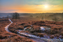 Early, Cold Winter Morning At The Posbank In The Netherlands With A Rising Sun Over A Beautiful Landscape. HDR