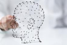 Technology Head