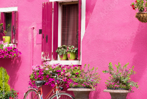 Romantic house facade Wallpaper Mural