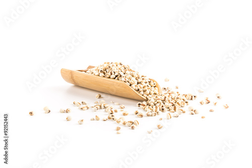 Vászonkép  coix seed Barley