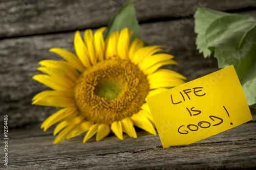 Yellow card with a Life is good message leaning on a beautiful b Tapéta, Fotótapéta