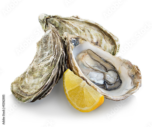 Poster Schaaldieren Oysters isolated on a white background