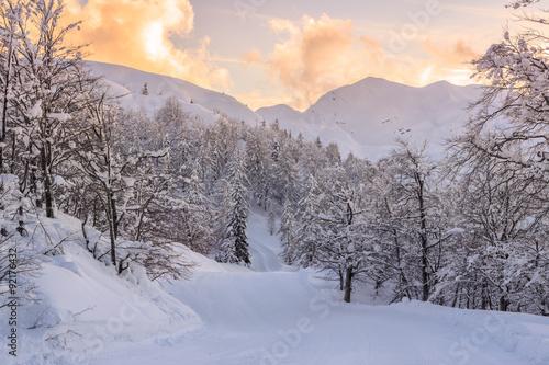 Foto auf Gartenposter Hugel Winter landscape near Vogel ski center