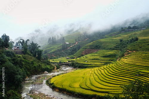 Fotobehang Rijstvelden Rice fields on terraced of Mu Cang Chai, YenBai, Vietnam. Rice fields prepare the harvest at Northwest Vietnam.