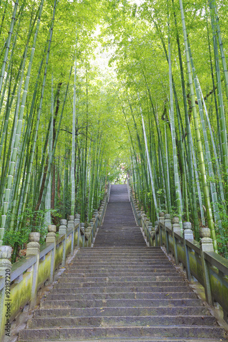 Foto op Plexiglas Bamboe Scenic mountaineer step stairs next to the bamboo forest