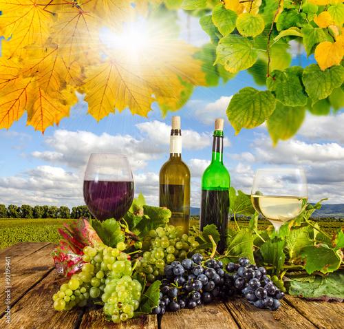 Fototapeta winnica   przyjemnosc-w-palatynacie-degustacja-wina-jesienia