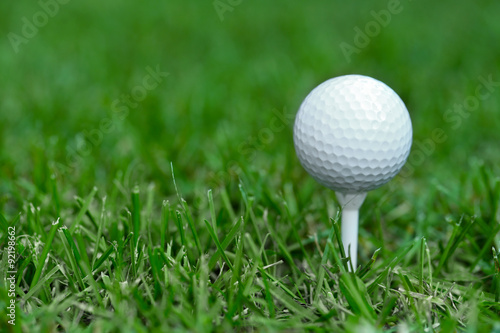 Poster Golf White golf ball on green grass background