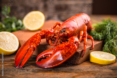 Fotografija  Lobster