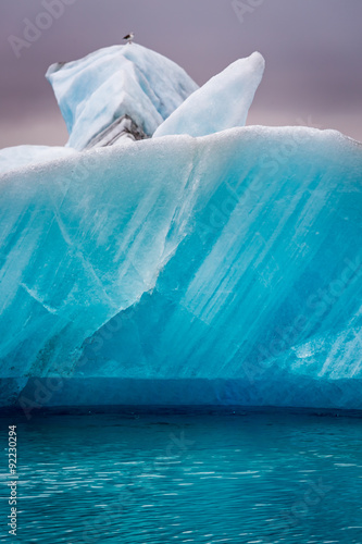 Photo sur Toile Glaciers Seagulls sitting on top of iceberg in Iceland