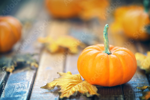 Fotografie, Obraz  Autumn pumpkin background