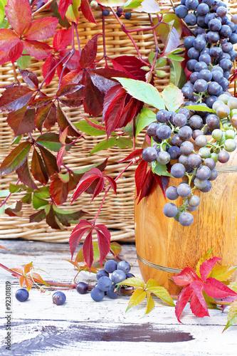 winogrona-na-beczce-w-lisciach-dzikich-winogron