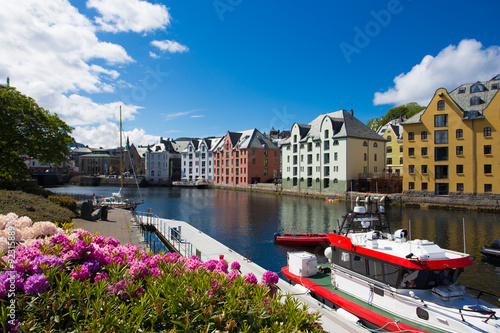 Foto auf Gartenposter Skandinavien flowers of Alesund