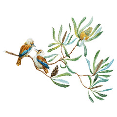 NaklejkaAustralian kookaburra bird