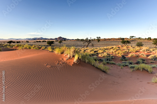 Foto op Canvas Koraal Desert Landscape - NamibRand, Namibia