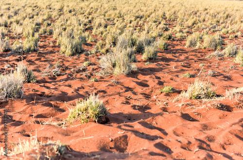 Papiers peints Corail Desert Landscape - NamibRand, Namibia