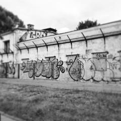 Fototapeta na wymiar Graffiti na ruinach