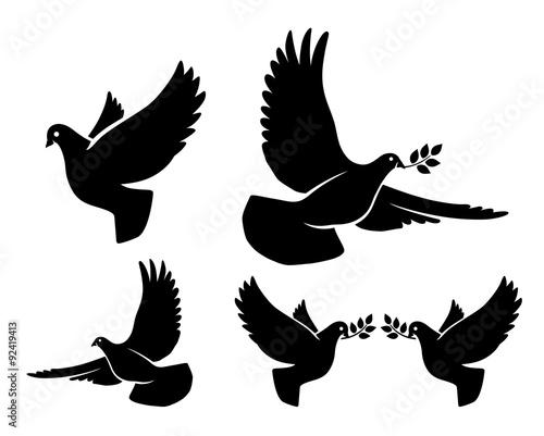 Fotografie, Obraz Dove silhouettes