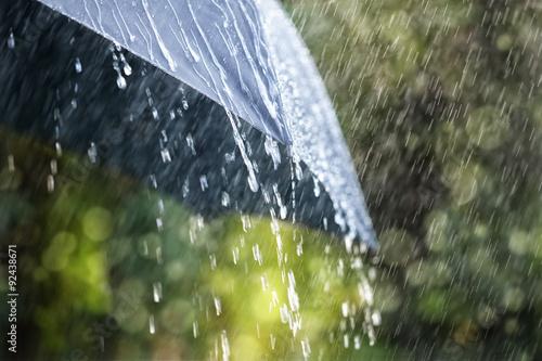 Fotomural Rain on umbrella