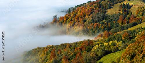 Fotobehang Wit Autumn landscape
