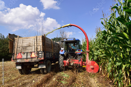 Tractor and trailer harvesting corn Poster