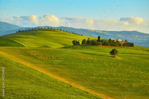 Foto auf Gartenposter Hugel Tuscany, rural sunset landscape. Countryside farm, cypresses tre