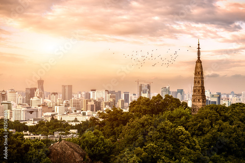 Spoed Foto op Canvas Oceanië panorama view of skyscrapers in a modern city