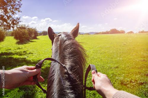 Fotografie, Obraz  Pferd mit Reiterin auf einem saftig grünen Feld