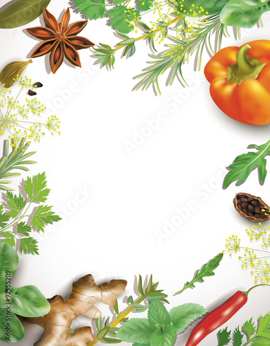 Frame with spice and vegetables on white. Vector illustration.
