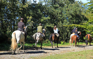 paseo a caballo grupo monte 8580-f15