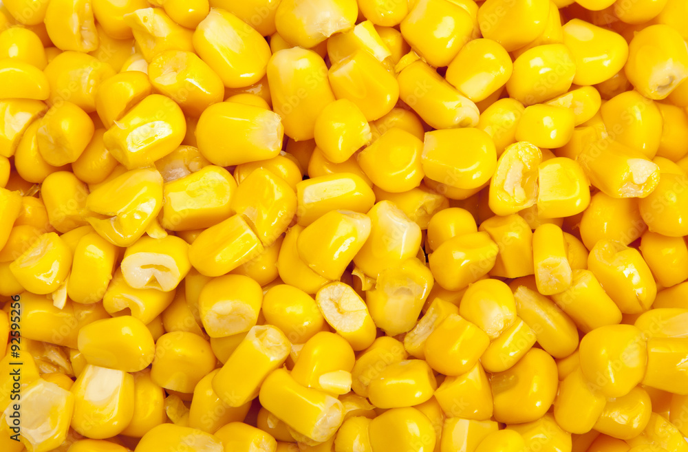 Fotografia Bulk of corn grains