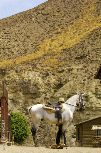 Photo  Cavallo nel Western Leone