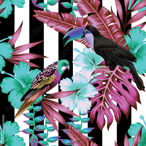 obraz dibond tropical birds and flowers pattern, striped background