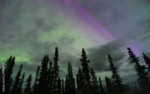 Photo  Northern Lights Aurora Borealis Alaska Night Sky Astronomy