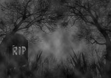Halloween Theme Of Dark Forest