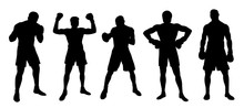 Boxer Silhouettes