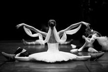 Gorgeous Ballerina Repeating M...