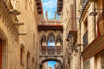 Fototapeta Architektura Carrer del Bisbe in Barcelona Gothic quarter, Spain
