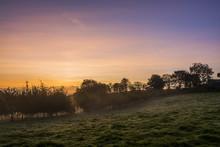 Misty Sunrise In Fields, Cornwall, Uk