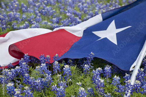 In de dag Texas Texas flag among bluebonnet flowers on bright spring day