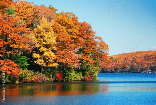 Aluminium Prints Autumn Autumn foliage over lake