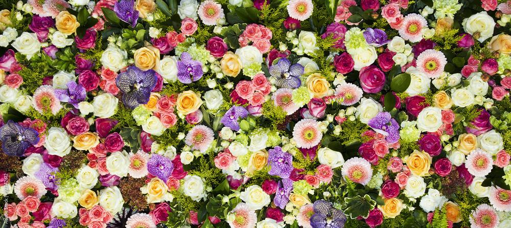 Fotografie, Obraz  fondo de flores
