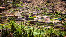 Valle Gran Rey: Terraced Fields, La Gomera At The Canary Islands