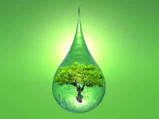 Obraz na Plexi biosphere