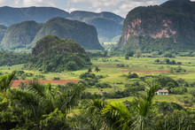 Panoramic View Over Landscape With Mogotes In Cuba