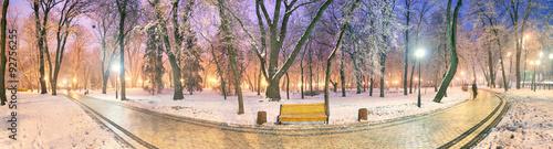 Fototapeten New York Mariinsky garden during inclement weather