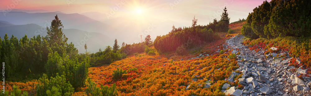 Fototapety, obrazy: Autumn colors in the Carpathians