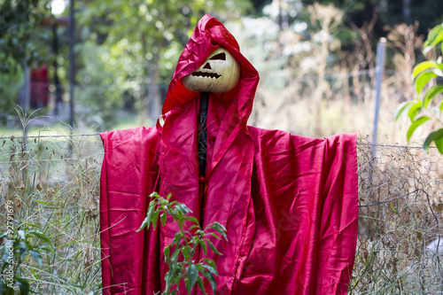 Photo  Scarecrow