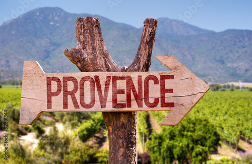 Provence wooden sign with winery background Poster